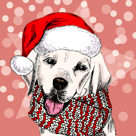 Vector portrait of labrador retriever dog wearing santa hat and scarf. Isolated on snowy trees and sparklers. Sketched color illustration. Christmas, Xmas, New year. Party decoration, greeting card. Illustration