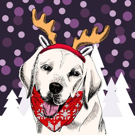 Vector labrador retriever dog wears raindeer anklers tiara and bandana. Isolated on snowy trees and sparklers. Sketched color illustration. Christmas, Xmas, New year. Party decoration, greeting card. Stock Photo