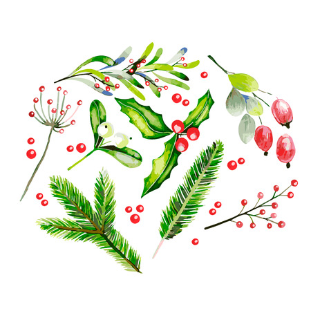 Watercolor vector illustration. Fir brancges, mistletoe, holly jolly, dor rose  and guelder rose twig and berries. Greeting card. Hand drawn. Christmas, Xmas, New year. Party decoration, greeting card