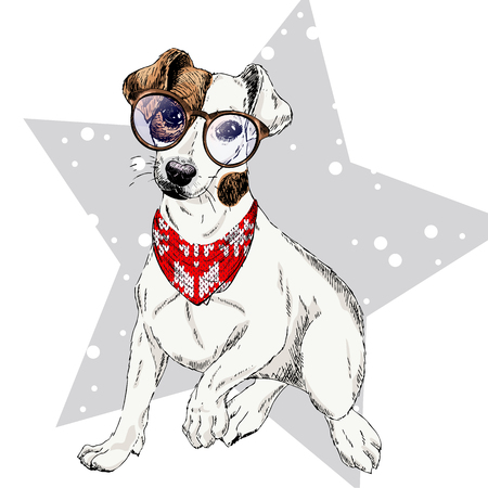 Vector portrait of Jack russel terrier dog wearing winter bandana and glasses. Isolated on star, snow. Skecthed color illustraion. Christmas, Xmas, New year. Party decoration, promotion, greeting card Ilustração