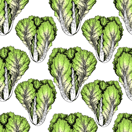 Hand drawn seamless pattern of chinese cabbage vegetables engraved colored art organic sketched objects use for restaurant, menu, grocery, market store, and party meal