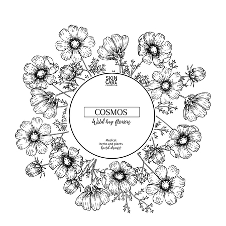 Hand drawn wild hay flowers. Cosmos flower. Medical herb. Vintage engraved art. Round composition. Good for cosmetics, medicine, treating, aromatherapy, nursing, package design health care 矢量图像