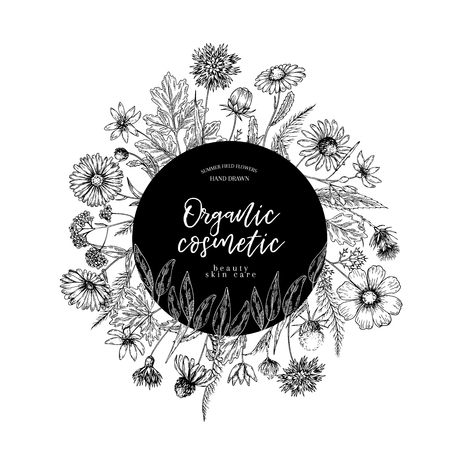 Hand drawn wild hay flowers. Medical herbs and plants. Calendula, Chamomile, Cornflower, Celandine, Cosmos, Yarrow, Thistle, Echinacea. Engraved Cosmetic essential oil package herbal tea medicine Ilustracja