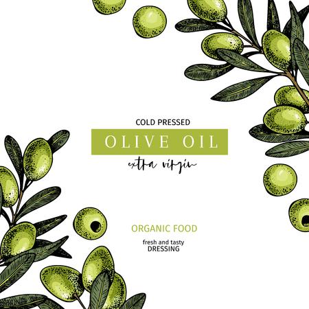 Hand drawn label of extra virgin olive oil. Vector colored vintage art. Set of farm vegetables. Organic sketched vegetarian objects. Use for restaurant, menu, package, market, flyer, template