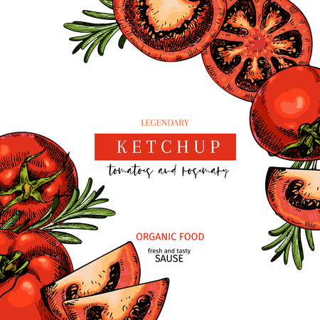 Hand drawn label of tomato and rosemary ketchup sause. Vector colored vintage art. Set of farm vegetables. Organic sketched vegetarian objects. For restaurant, menu, package, market, flyer, template