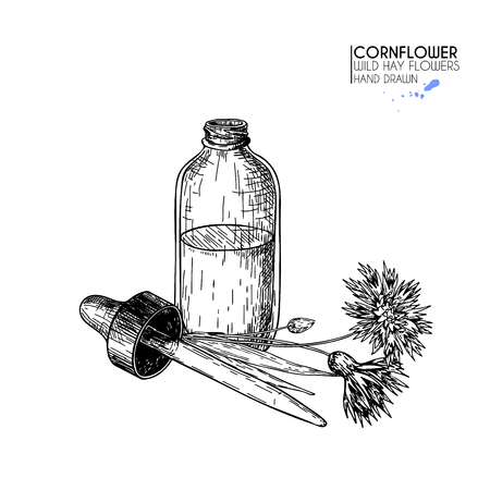 Hand drawn set of essential oils. Vector cornflower flower. Medicinal herb with glass dropper bottle. Engraved art. Good for cosmetics, medicine, treating, aromatherapy, package design health care Banque d'images - 100900654