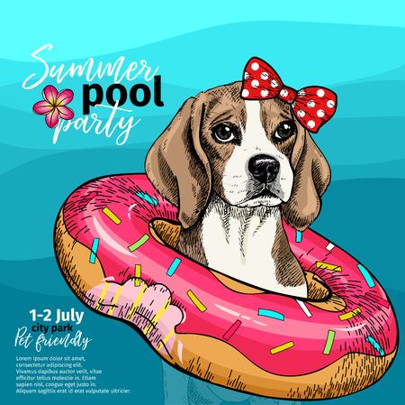 Retrato de vector de perro beagle nadando en el agua. Flotador de rosquilla. Ilustración de paty de piscina de verano. Mar, océano, playa.