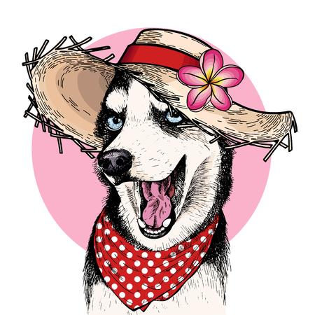 Vector portrait of Siberian husky dog wearing straw hat, flower and polka dot bandana. Summer fashion illustration. Hand drawn pet portait. Poster, t-shirt print, holiday, postcard, summertime.