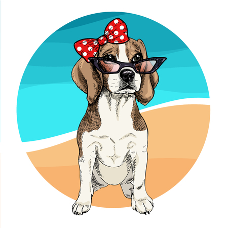 Vector portrait of beagle dog wearing sunglasses and retro bow. Summer fashion illustration. Vacation, sea, beach, ocean. Hand drawn pet portait. Poster, t-shirt print, holiday, postcard, summertime