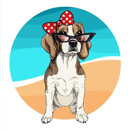 Vector portrait of beagle dog wearing sunglasses and retro bow. Summer fashion illustration. Vacation, sea, beach, ocean. Hand drawn pet portait. Poster, t-shirt print, holiday, postcard, summertime Ilustração Vetorial