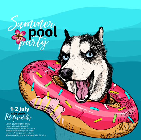 Vector portrait of Siberian husky dog swimming in water. Donut float. Summer pool paty illustration. Sea, ocean, beach. Hand drawn pet portait. Poster, t-shirt print, holiday, postcard, summertime.