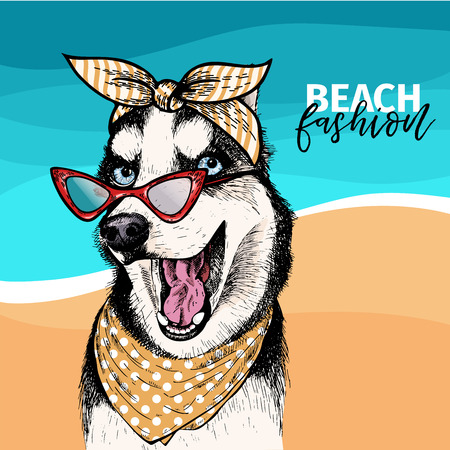 Vector portrait of Siberian husky dog wearing sunglasses and retro bandana. Summer fashion illustration. Sea, beach, ocean. Hand drawn pet portait. Poster, t-shirt print, holiday, postcard, summertime Illustration