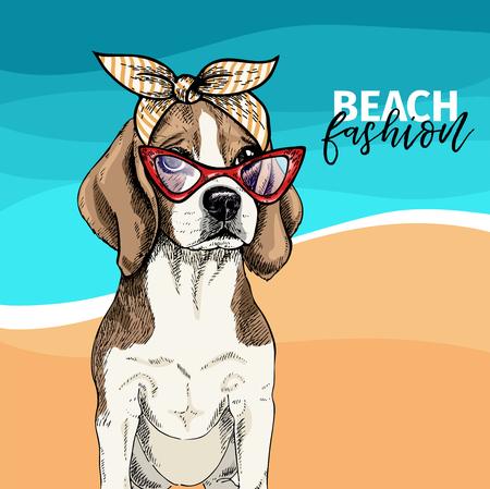 Vector portrait of beagle dog wearing sunglasses, retro bandana. Summer fashion illustration. Vacation, sea, beach, ocean. Hand drawn pet portait. Poster, t-shirt print, holiday, postcard summertime Ilustração