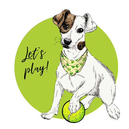 Vector portrait of Jack Russel terrier dog with tennis ball. Lets play. Green curveball and background. Summer illustration. Hand drawn pet portait. Poster, shirt print, holiday, postcard, summertime