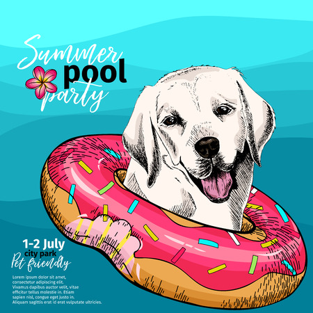 Vector portrait of Labrador retriever dog swims in water. Donut float. Summer pool paty illustration. Sea, ocean, beach. Hand drawn pet portait. Poster, t-shirt print, holiday, postcard, summertime