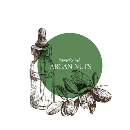 Hand drawn set of essential oils. Vector argan nut. Medicinal herb with glass dropper bottle. Engraved art. Good for cosmetics, medicine, treating, aromatherapy, package design health care