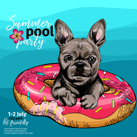 Vector portrait of French bulldog dog swimming in water. Donut float. Summer pool paty illustration. Sea, ocean, beach. Hand drawn pet portait. Poster, t-shirt print, holiday, postcard, summertime