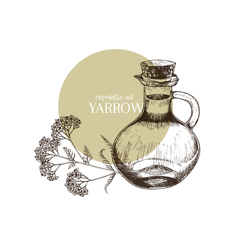 Hand drawn set of essential oils. Vector yarrow milfoil flower. Medicinal herb with glass dropper bottle. Engraved art. Good for cosmetics, medicine, treating, aromatherapy, package design health care