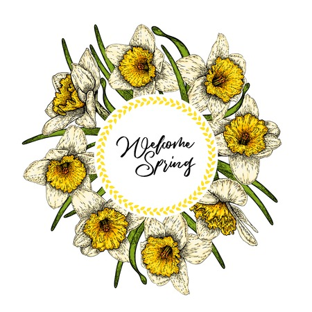 Hand drawn spring floral banner. Colored daffodils. Flower delivery. Hand drawn detailed engraved illustration. Good for Easter, Woman day, Valentine greeting cards, sale flyer, wedding invitation Ilustração
