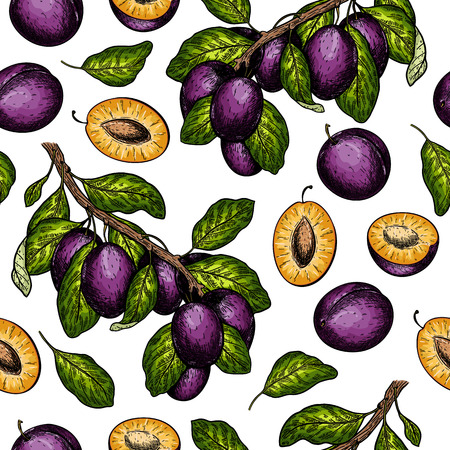 Seamless vector pattern of plum branches. Hand drawn. Engraved colored juicy natural fruit. Moisturizing serum, healthcare. Good for cosmetics, medicine, treating, package design, skincare
