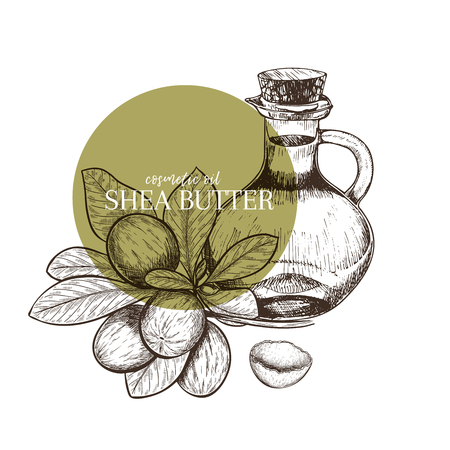 Hand drawn set of essential oils. Vector shea nut butter. Medicinal herb with glass dropper bottle. Engraved art. Good for cosmetics, medicine, treating, aromatherapy, package design health care