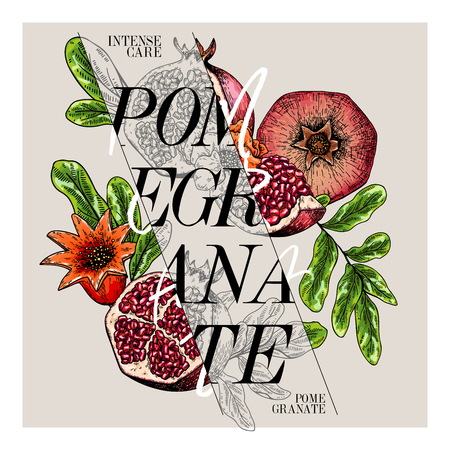 Hand drawn set of beauty product label design. Vector pomegranate cosmetic. Typography template. Engraved art. Essential oils, medicine, treating, aromatherapy, package design, health care