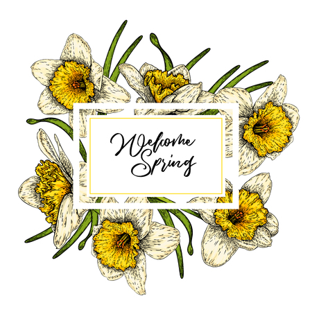 Hand drawn spring floral banner. Colored daffodils. Flower delivery. Hand drawn detailed engraved illustration. Good for Easter, Woman day, Valentine greeting cards, sale flyer, wedding invitation Standard-Bild - 126039211