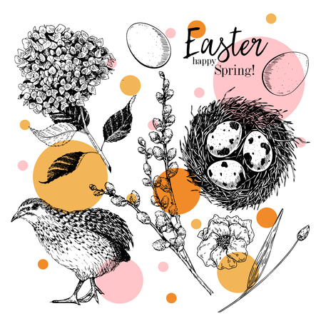 Easter greeting card. Hand drawn vector banner. Eggs, nest, Easter cake, willow branch, quail, hydrangea flower, poppy. Vintage engraved spring holiday decoration. Traditional retro icon set Imagens - 125299902