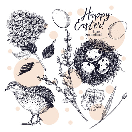 Easter greeting card. Hand drawn vector banner. Eggs, nest, Easter cake, willow branch, quail, hydrangea flower, poppy. Vintage engraved spring holiday decoration. Traditional retro icon set Imagens - 125100480