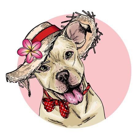 Vektorporträt des Pitbullterrierhundes mit Strohhut, Blume und Tupfenbandana Sommermodeillustration. Handgezeichnetes Haustierportrait. Poster, T-Shirt-Druck, Urlaub, Postkarte, Sommer
