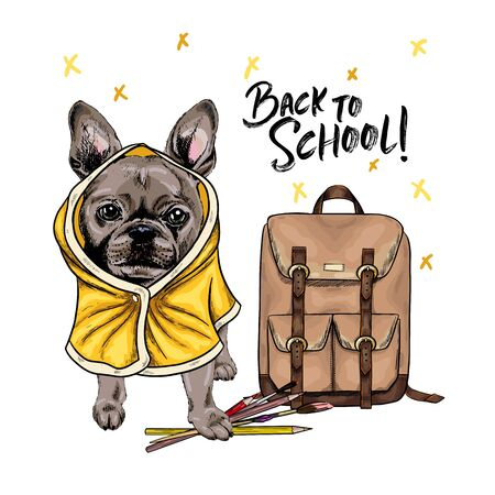 Vector portrait of French Bulldog dog with backpack, pens and pencils wearing the raincoat. Back to school illustration. Hand drawn pet portait. Study poster, student cartoon. Education metaphor