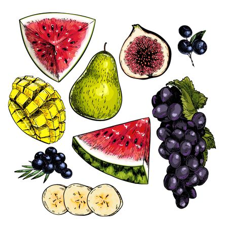 Hand drawn set of tropical fuits. Vector colored isolated objects. Sliced watermelon, mango, banana, fig. Grape branch, pear, blueberry. Restaurant menu, food package. Summer exotic harvest Ilustrace