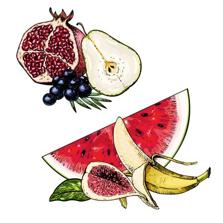 Hand drawn set of tropical fuits. Vector colored isolated objects. Pomegranate, pear, blueberry, watermelon, banana, fig, whole and slised. Restaurant menu, food package. Summer exotic harvest