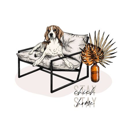 Hand drawn beagle dog lies in modern designer chair. Stay home. Vector engraved quarantine poster. Stay chick, stay at home. Covid-19 pandemic flyer. Palm leaf and monstera decorations