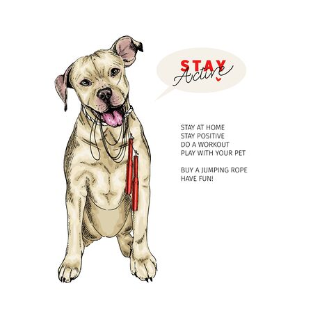 Hand drawn pit bull dog sits with a jumping rope. Stay home. Vector engraved quarantine poster. Stay active, stay at home. Covid-19 pandemic flyer. Sport, workout, active life