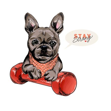 Hand drawn french bulldog dog sits with a dumpbell. Stay home. Vector engraved quarantine poster. Stay strong, stay at home. Covid-19 pandemic flyer. Sport, workout, active life Ilustração