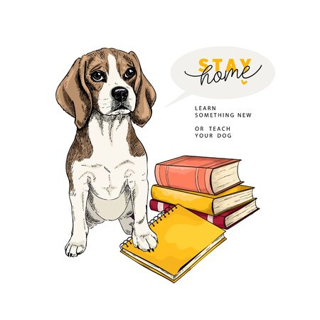Hand drawn beagle dog sits with a books and a notebook. Vector engraved quarantine poster. Stay smart, stay at home. Covid-19 pandemic flyer. Education, calmness, knowledge Ilustração