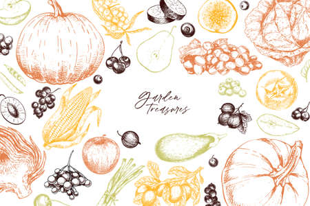 Hand drawn vegetables and fruits. Vector pupkin, pear,apple, artichoke, plum, grape, tomato, onion, cheery, gooseberry blackberry Engraved illustration Menu flyer package design