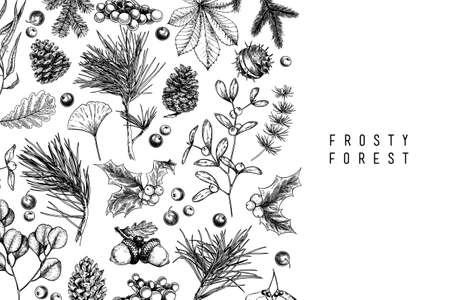 Hand drawn detailed Christmas banner. Vector forest pine, cone, mistletoe, holly, accorn, berries. Xmas, New Year minimalist design. Holiady sale, advertisement, shop promotion brand merchandising Иллюстрация