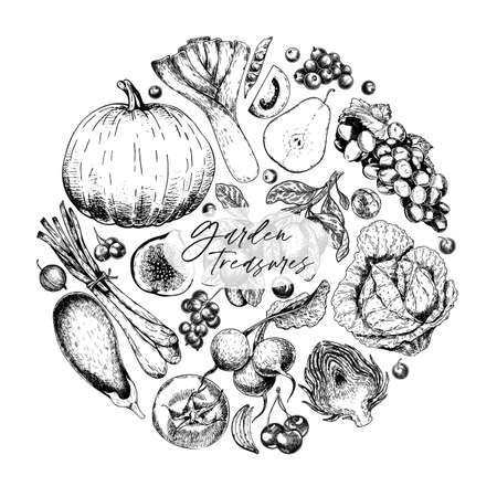 Hand drawn vegetables and fruits. Vector pupkin, pear,apple, artichoke, plum, grape, tomato, onion, cheery, gooseberry blackberry Engraved illustration Menu flyer package design