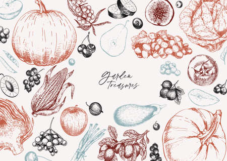 Hand drawn vegetables and fruits. Vector pumpkin, pear,apple, artichoke, plum, grape, tomato, onion, cheery, gooseberry blackberry Engraved illustration Menu flyer package design