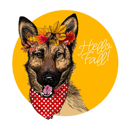 Vector portrait of german shepherd dog wearing autumn leaves crown. Hello fall illustration. Oak, maple, chestnut, rowen. Hand drawn pet portait. Poster, t-shirt print, postcard, seasonal greeting.