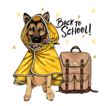 Vector portrait of german shepherd dog with backpack, pens and pencils wearing the raincoat. Back to school illustration. Hand drawn pet portait. Study poster, student cartoon. Education metaphor. Ilustração
