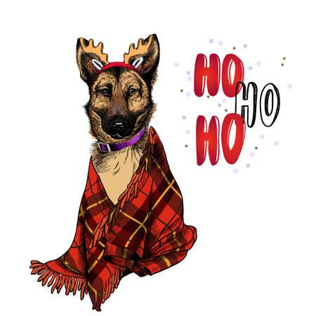 Hand drawn portrait of german shepherd dog wearing deer horn hat and plaid blanket. Vector Christmas poster. Xmas greeting card. Winter seasonal celebration. Colored new year pet portrait