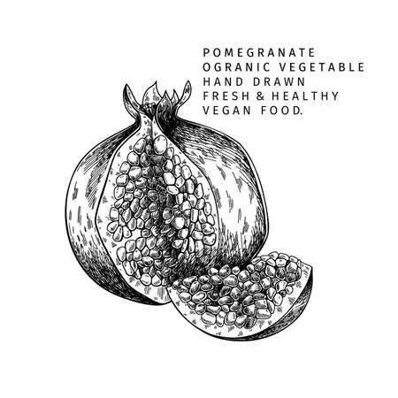 Hand drawn half pomegranate and flower. Vector engraved colored illustration. Juicy natural fruit. Food healthy ingredient. For cooking, cosmetic package design, medicinal herb, treating, healt care