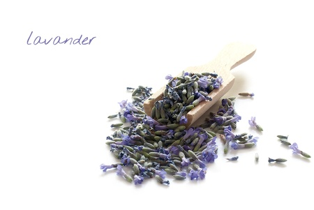 Lavender for making tea in wooden spoon photo