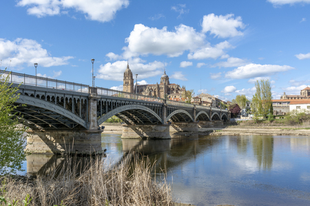 Cathedrals of Salamanca seen from the bank of the river Tormes in spring