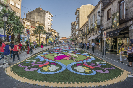 Ponteareas, Pontevedra, Spain; 06 07 2015: petal and flower carpet for Corpus Christi celebration Imagens - 102783163