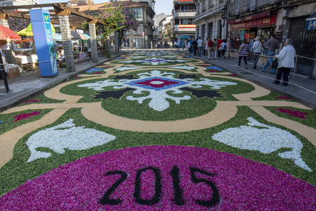Ponteareas, Pontevedra, Spain; 06 07 2015: petal and flower carpet for Corpus Christi celebration Editorial