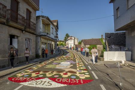 Ponteareas, Pontevedra, Spain; 06 07 2015: petal and flower carpet for Corpus Christi celebration Editorial